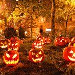 Scraptastic November Specials